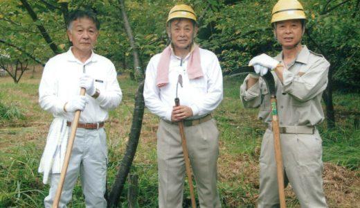 北浦広葉樹の森の整備